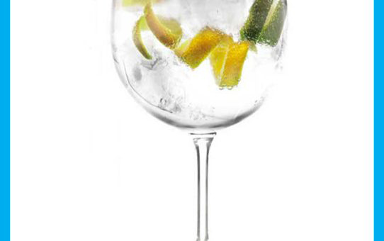 gin-tonic-cocktail400-x-548-14-kb-jpeg-x