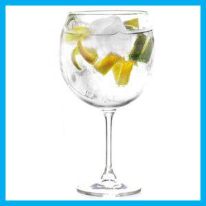 GIN TONIC in wijnglas met citroenschil, limoenschijfes en ijsblokjes